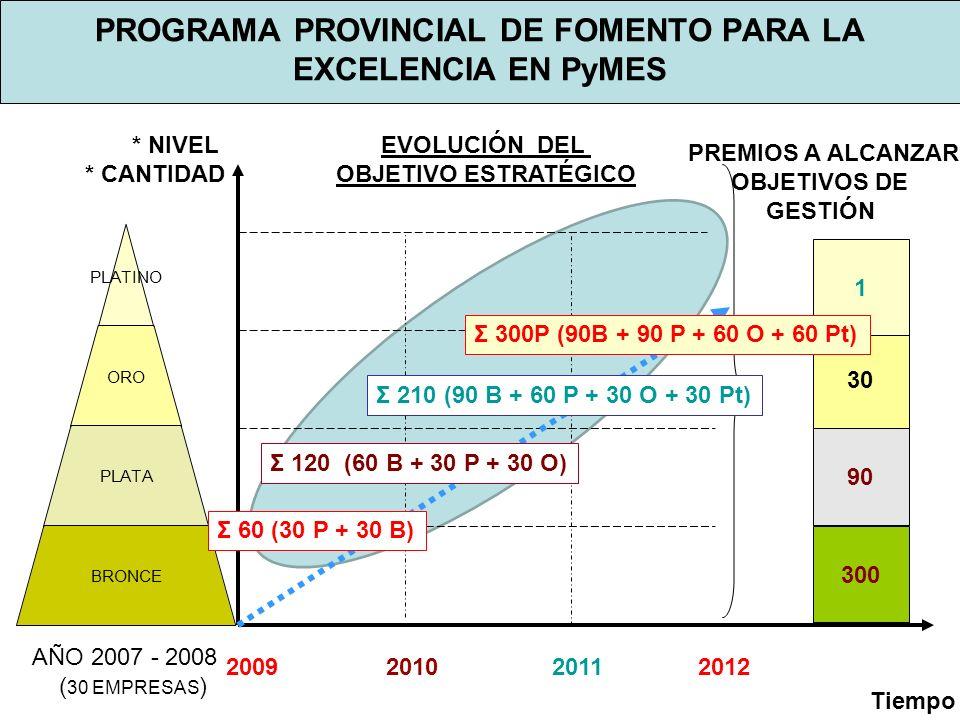 PROGRAMA PROVINCIAL DE FOMENTO PARA LA EXCELENCIA EN PyMES PLATINO ORO PLATA BRONCE 300 90 30 1 PREMIOS A ALCANZAR OBJETIVOS DE GESTIÓN * NIVEL * CANTIDAD 2009 2010 2011 2012 Tiempo EVOLUCIÓN DEL OBJETIVO ESTRATÉGICO Σ 300P (90B + 90 P + 60 O + 60 Pt) Σ 210 (90 B + 60 P + 30 O + 30 Pt) Σ 120 (60 B + 30 P + 30 O) Σ 60 (30 P + 30 B) AÑO 2007 - 2008 ( 30 EMPRESAS )