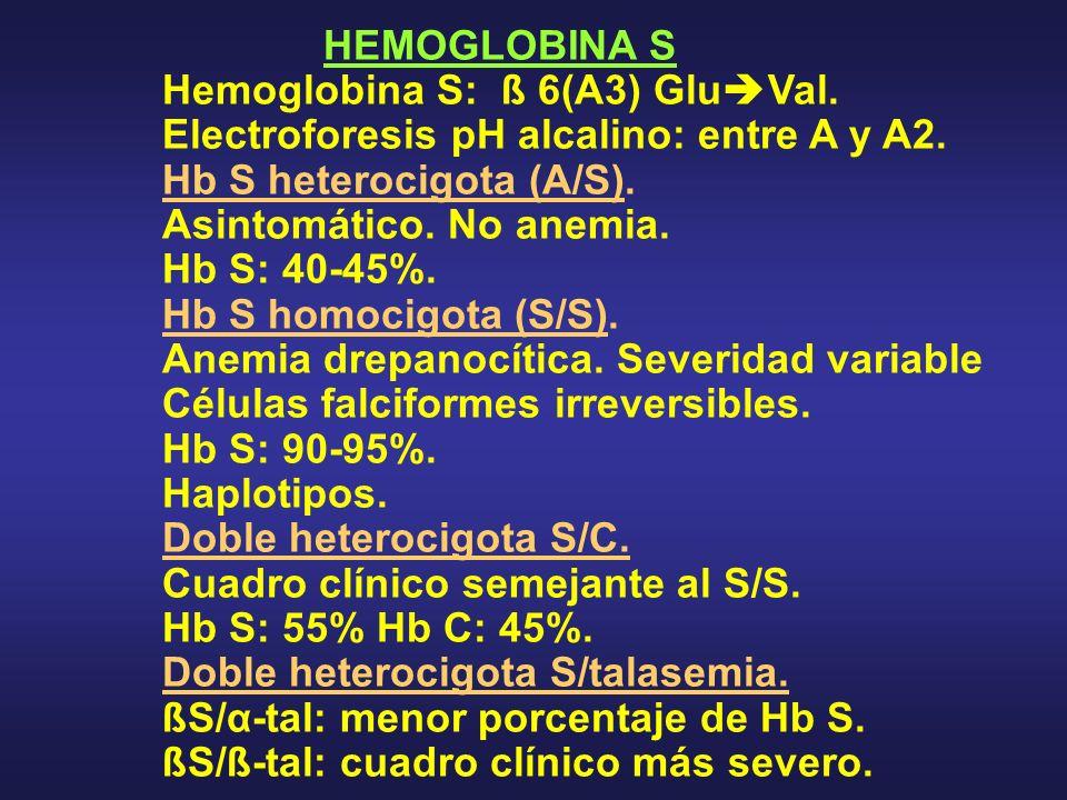 HEMOGLOBINA S Hemoglobina S: ß 6(A3) Glu Val. Electroforesis pH alcalino: entre A y A2. Hb S heterocigota (A/S). Asintomático. No anemia. Hb S: 40-45%