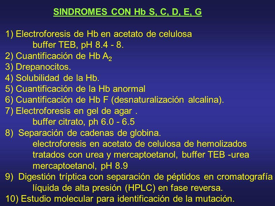 SINDROMES CON Hb S, C, D, E, G 1) Electroforesis de Hb en acetato de celulosa buffer TEB, pH 8.4 - 8. 2) Cuantificación de Hb A 2 3) Drepanocitos. 4)