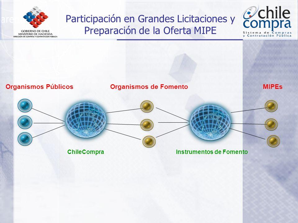Organismos PúblicosOrganismos de Fomento Participación en Grandes Licitaciones y Preparación de la Oferta MIPE MIPEs ChileCompraInstrumentos de Fomento