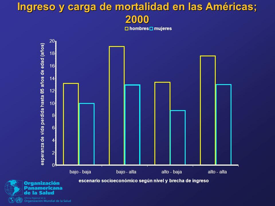 Ingreso y carga de mortalidad en las Américas; 2000 0 2 4 6 8 10 12 14 16 18 20 bajo - bajabajo - altaalto - bajaalto - alta escenario socioeconómico según nivel y brecha de ingreso esperanza de vida perdida hasta 85 años de edad (años) hombresmujeres
