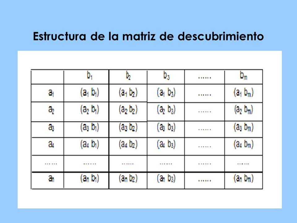 Estructura de la matriz de descubrimiento