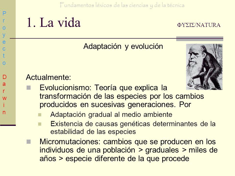 1. La vida ΦΥΣΙΣ/NATURA Adaptación y evolución Actualmente: Evolucionismo: Teoría que explica la transformación de las especies por los cambios produc