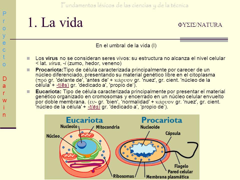 1. La vida ΦΥΣΙΣ/NATURA En el umbral de la vida (I) Los virus no se consideran seres vivos: su estructura no alcanza el nivel celular < lat. virus, -i