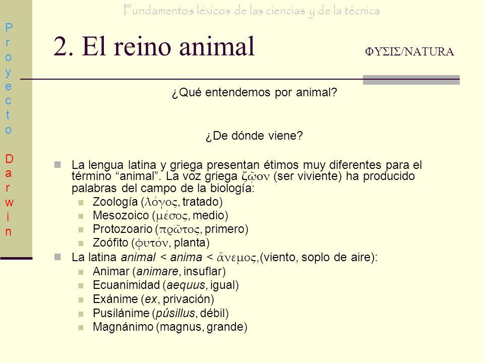 2. El reino animal ΦΥΣΙΣ/NATURA ¿Qué entendemos por animal? ¿De dónde viene? La lengua latina y griega presentan étimos muy diferentes para el término