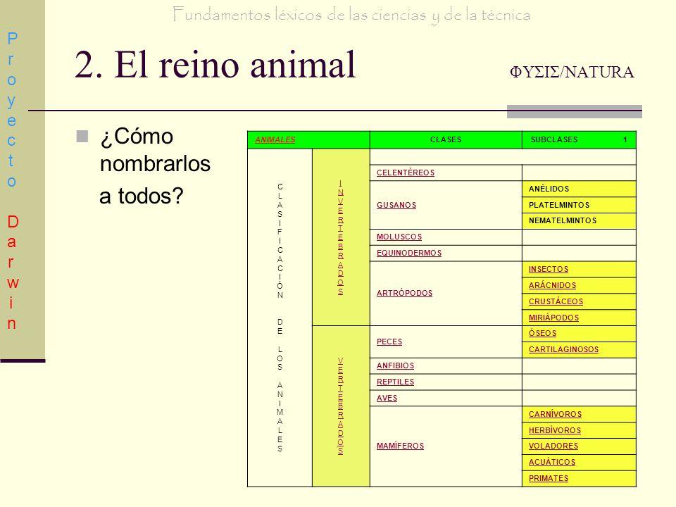 2. El reino animal ΦΥΣΙΣ/NATURA ¿Cómo nombrarlos a todos? Proyecto DarwinProyecto Darwin Fundamentos léxicos de las ciencias y de la técnica ANIMALESC