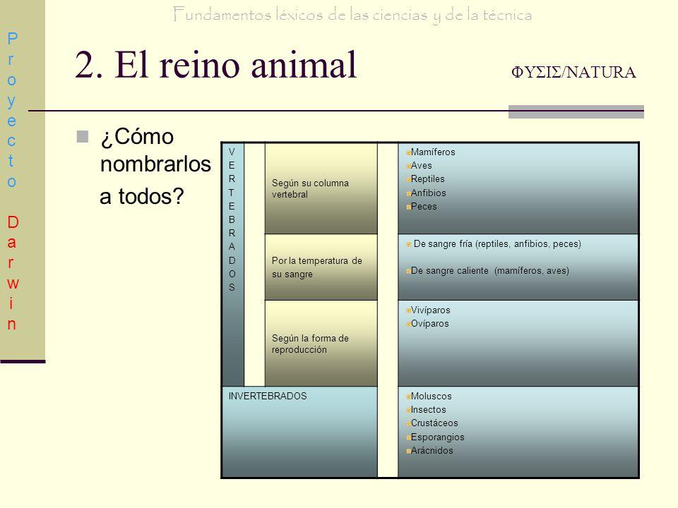 2. El reino animal ΦΥΣΙΣ/NATURA ¿Cómo nombrarlos a todos? Proyecto DarwinProyecto Darwin Fundamentos léxicos de las ciencias y de la técnica VERTEBRAD