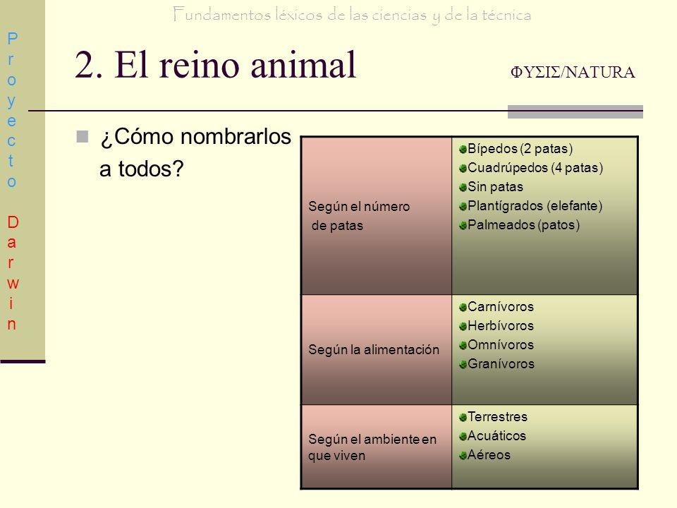 2. El reino animal ΦΥΣΙΣ/NATURA ¿Cómo nombrarlos a todos? Proyecto DarwinProyecto Darwin Fundamentos léxicos de las ciencias y de la técnica Según el