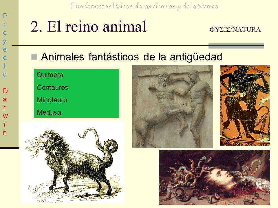 2. El reino animal ΦΥΣΙΣ/NATURA Animales fantásticos de la antigüedad Proyecto DarwinProyecto Darwin Fundamentos léxicos de las ciencias y de la técni