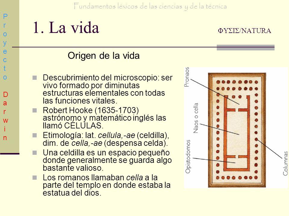 1. La vida ΦΥΣΙΣ/NATURA Origen de la vida Descubrimiento del microscopio: ser vivo formado por diminutas estructuras elementales con todas las funcion