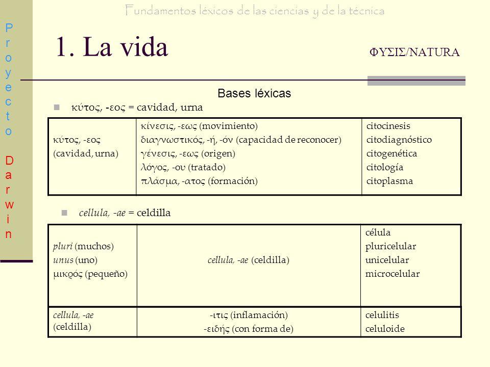 1. La vida ΦΥΣΙΣ/NATURA Bases léxicas κτος, -εος = cavidad, urna κτος, -εος (cavidad, urna) κνεσις, -εως (movimiento) διαγνωστικς, -, -ν (capacidad de