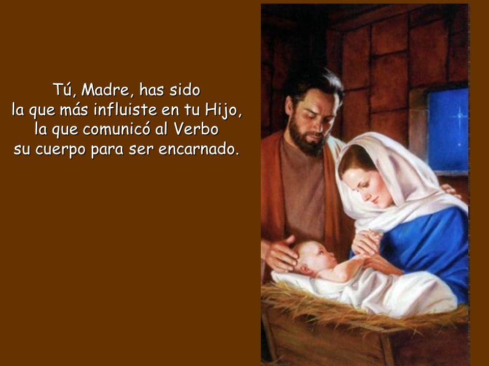 Tú, Madre, has sido la que más influiste en tu Hijo, la que comunicó al Verbo su cuerpo para ser encarnado.