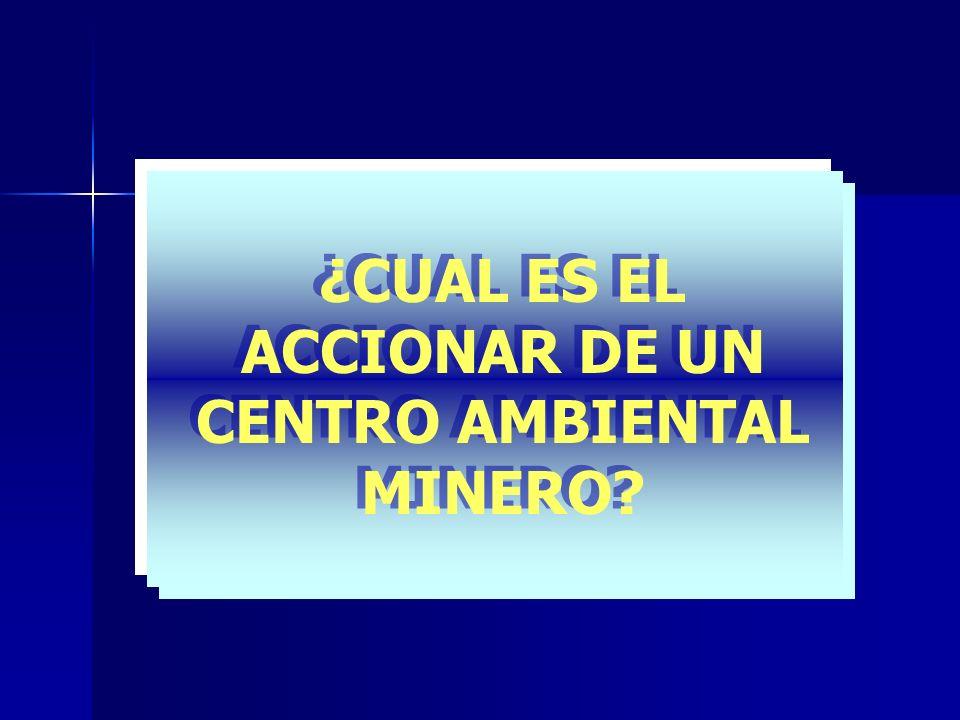 ¿CUAL ES EL ACCIONAR DE UN CENTRO AMBIENTAL MINERO?