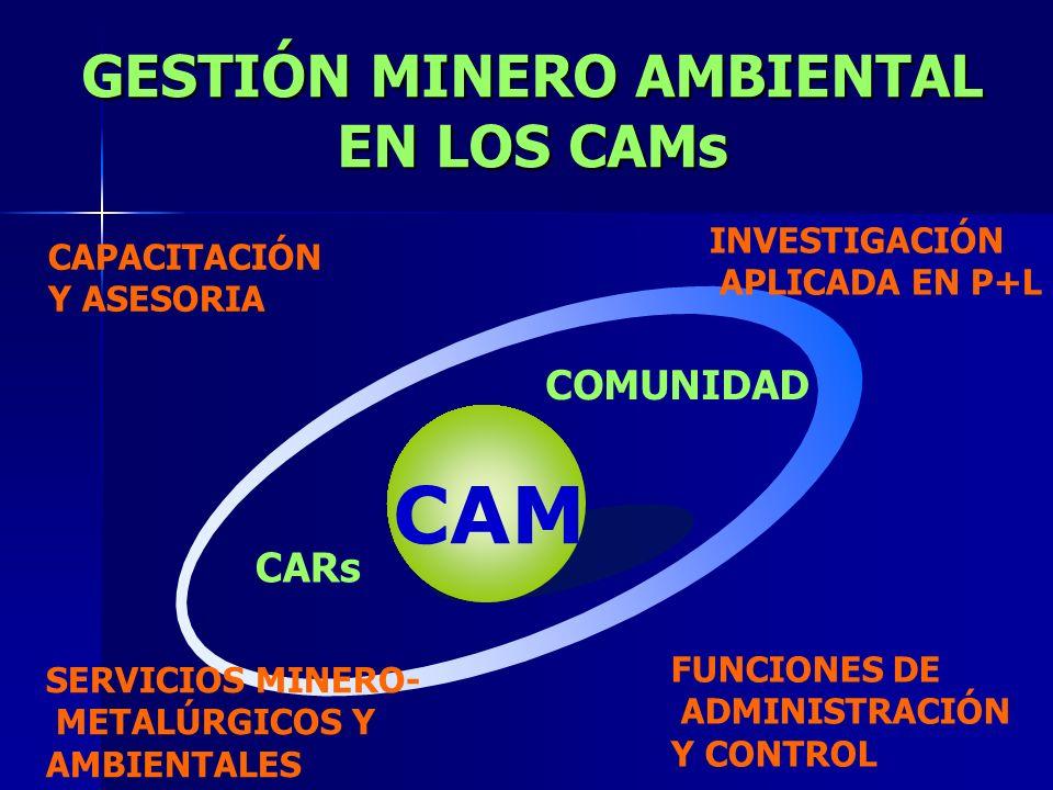 GESTIÓN MINERO AMBIENTAL EN LOS CAMs CAM INVESTIGACIÓN APLICADA EN P+L FUNCIONES DE ADMINISTRACIÓN Y CONTROL SERVICIOS MINERO- METALÚRGICOS Y AMBIENTA