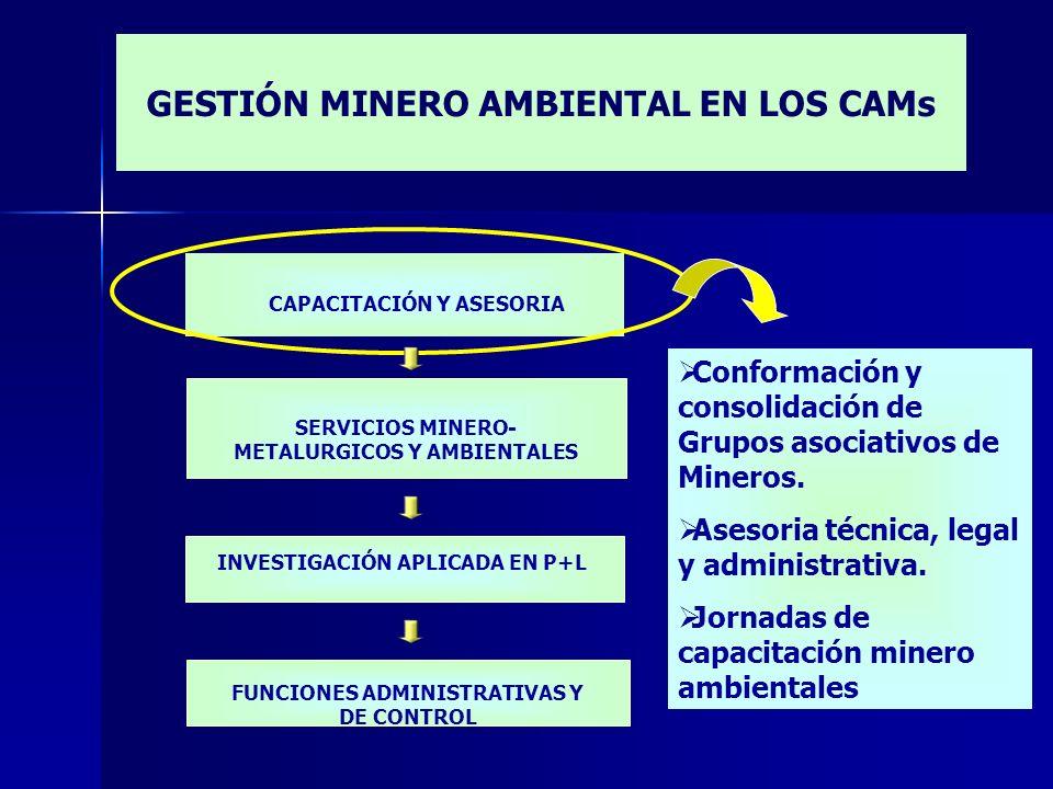 SERVICIOS MINERO- METALURGICOS Y AMBIENTALES INVESTIGACIÓN APLICADA EN P+L FUNCIONES ADMINISTRATIVAS Y DE CONTROL CAPACITACIÓN Y ASESORIA Conformación