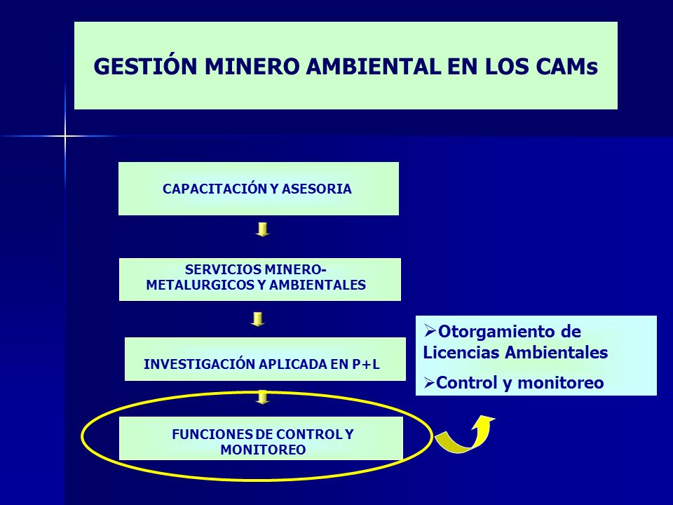 CAPACITACIÓN Y ASESORIA Otorgamiento de Licencias Ambientales Control y monitoreo INVESTIGACIÓN APLICADA EN P+L FUNCIONES DE CONTROL Y MONITOREO SERVI