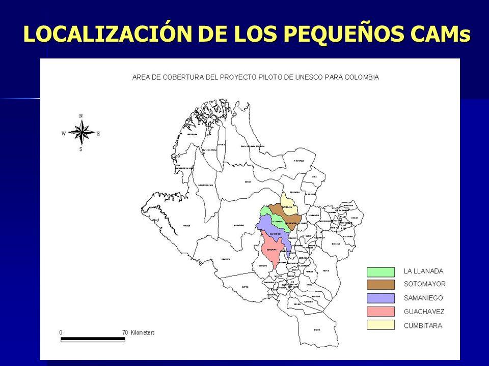 LOCALIZACIÓN DE LOS PEQUEÑOS CAMs