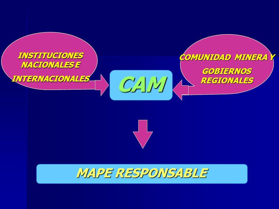 CAM INSTITUCIONES NACIONALES E INTERNACIONALES MAPE RESPONSABLE COMUNIDAD MINERA Y GOBIERNOS REGIONALES