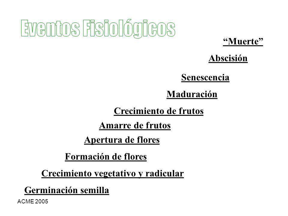 ACME 2005 Germinación semilla Crecimiento vegetativo y radicular Formación de flores Apertura de flores Amarre de frutos Crecimiento de frutos Madurac