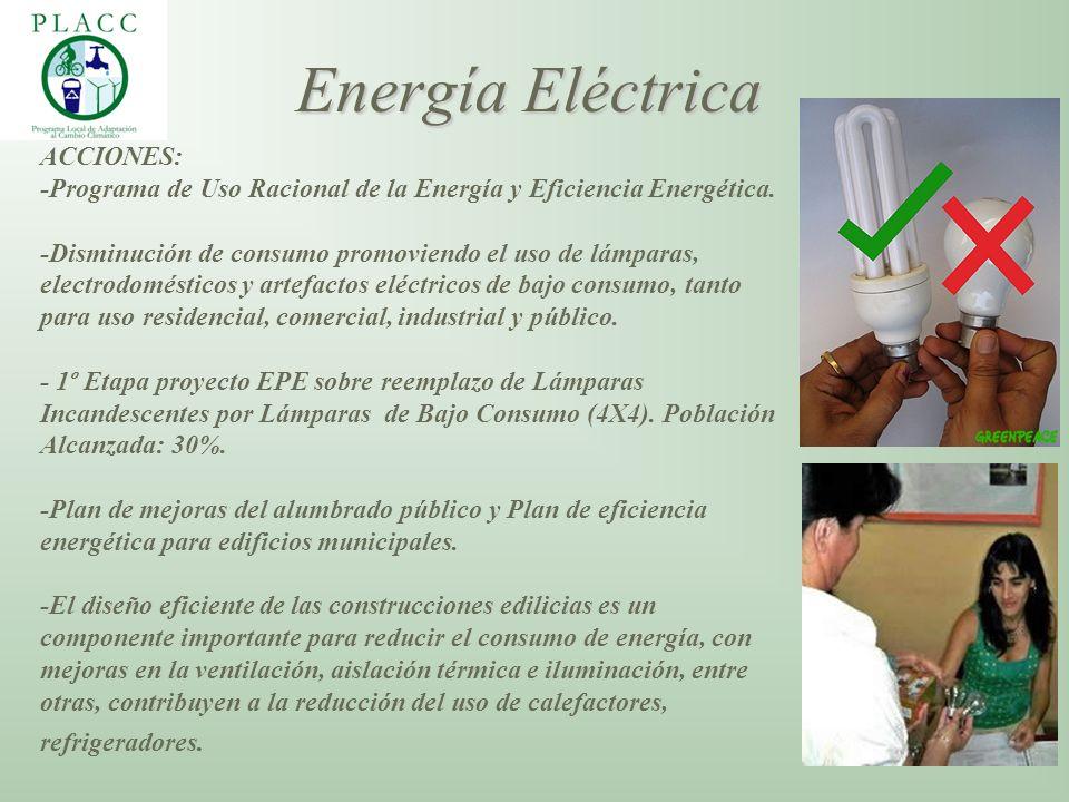 ACCIONES: -Programa de Uso Racional de la Energía y Eficiencia Energética. -Disminución de consumo promoviendo el uso de lámparas, electrodomésticos y