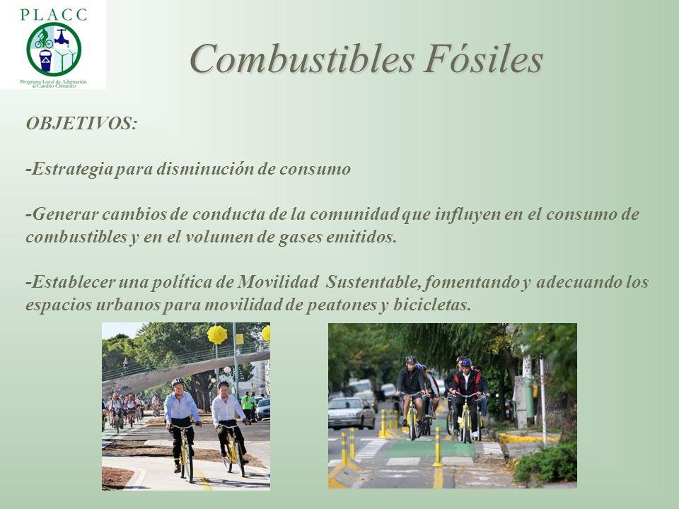 OBJETIVOS: -Estrategia para disminución de consumo -Generar cambios de conducta de la comunidad que influyen en el consumo de combustibles y en el vol