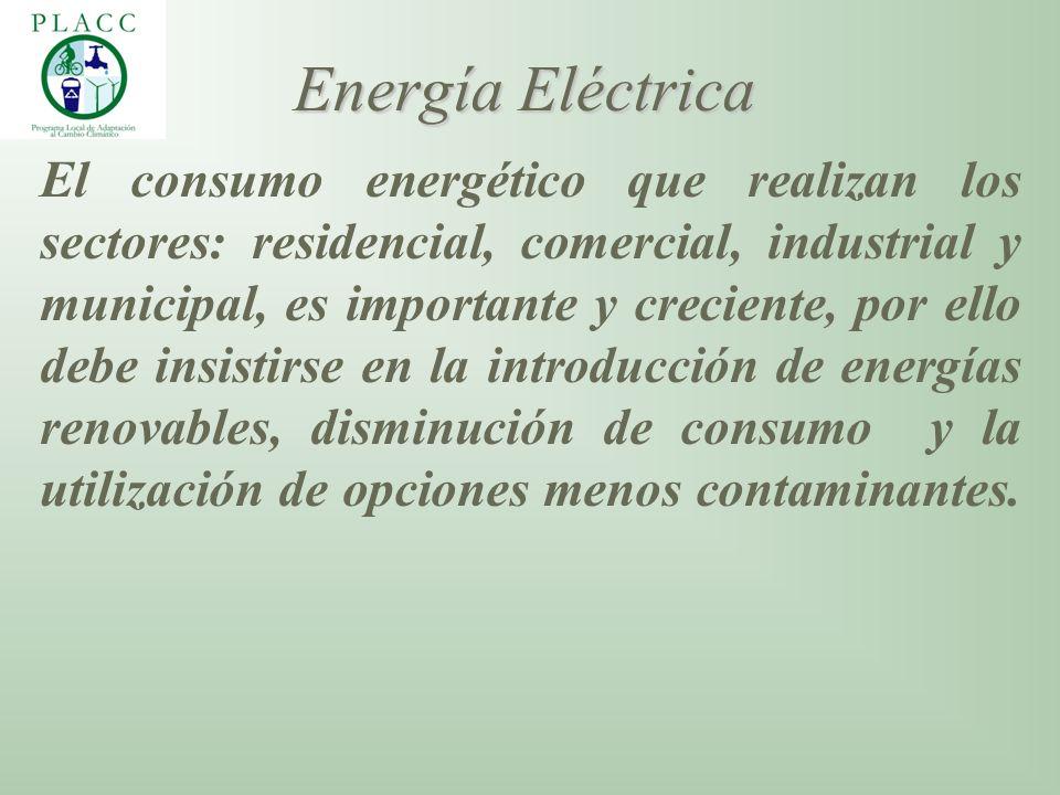El consumo energético que realizan los sectores: residencial, comercial, industrial y municipal, es importante y creciente, por ello debe insistirse e
