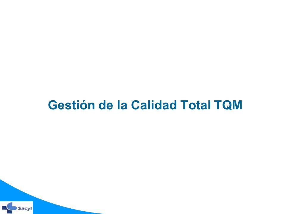 Gestión de la Calidad Total TQM