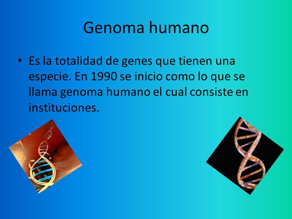 Genoma humano Es la totalidad de genes que tienen una especie. En 1990 se inicio como lo que se llama genoma humano el cual consiste en instituciones.