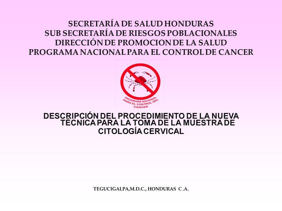 Antecedentes: 1997- La Secretaría de Salud implementó el Manual de Normas y Procedimientos para la Prevención y Control del Cáncer Cérvico Uterino.