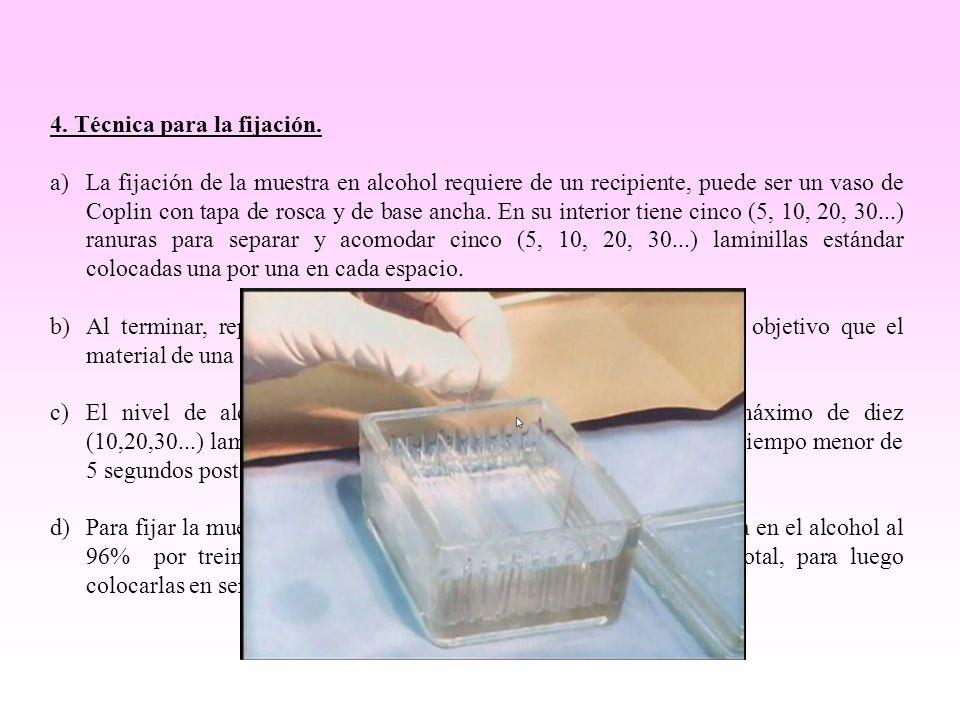 4. Técnica para la fijación. a)La fijación de la muestra en alcohol requiere de un recipiente, puede ser un vaso de Coplin con tapa de rosca y de base