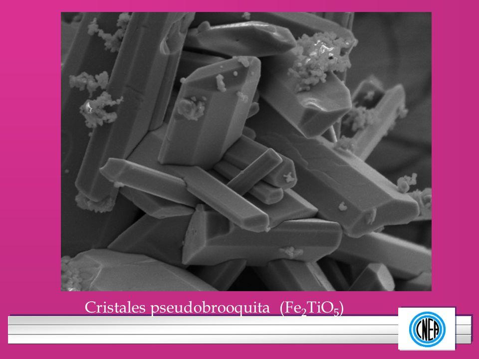 LOGOTIPO DE SU EMPRESA Cristales pseudobrooquita (Fe 2 TiO 5 )