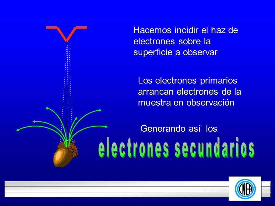 LOGOTIPO DE SU EMPRESA Hacemos incidir el haz de electrones sobre la superficie a observar Los electrones primarios arrancan electrones de la muestra