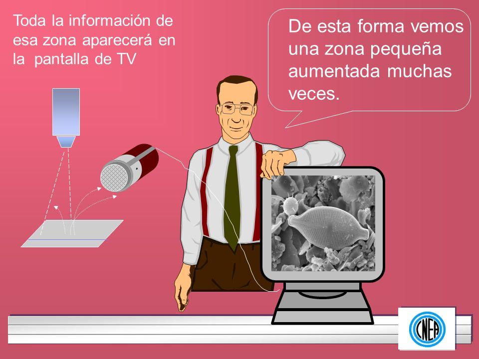 LOGOTIPO DE SU EMPRESA Toda la información de esa zona aparecerá en la pantalla de TV De esta forma vemos una zona pequeña aumentada muchas veces.