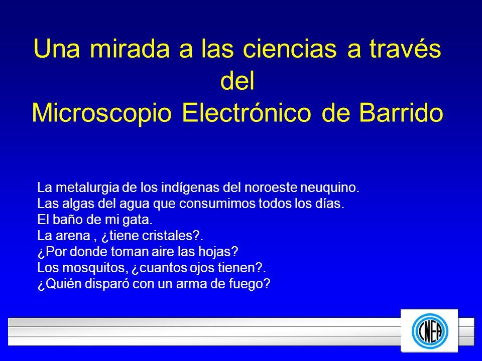 LOGOTIPO DE SU EMPRESA Una mirada a las ciencias a través del Microscopio Electrónico de Barrido La metalurgia de los indígenas del noroeste neuquino.