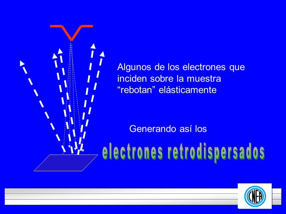 LOGOTIPO DE SU EMPRESA Algunos de los electrones que inciden sobre la muestra rebotan elásticamente Generando así los