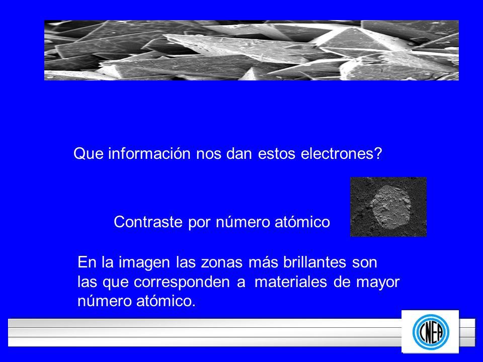 LOGOTIPO DE SU EMPRESA Que información nos dan estos electrones? Contraste por número atómico En la imagen las zonas más brillantes son las que corres