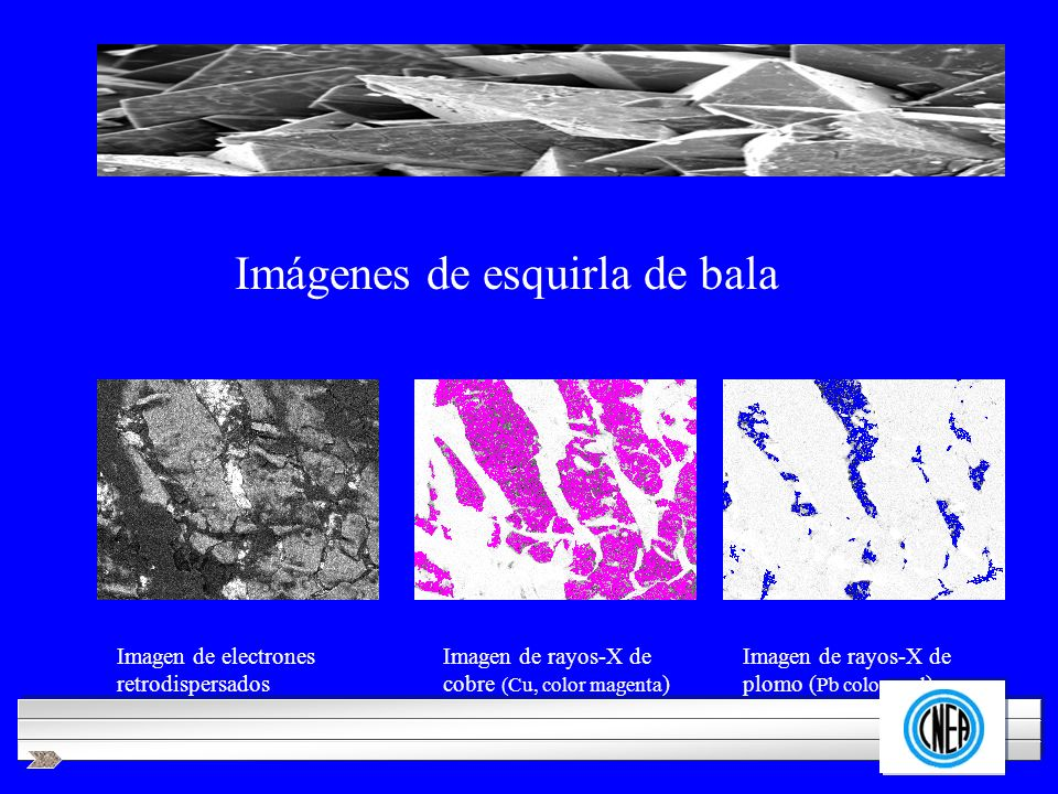 LOGOTIPO DE SU EMPRESA Imagen de electrones retrodispersados Imagen de rayos-X de cobre (Cu, color magenta ) Imagen de rayos-X de plomo ( Pb color azu