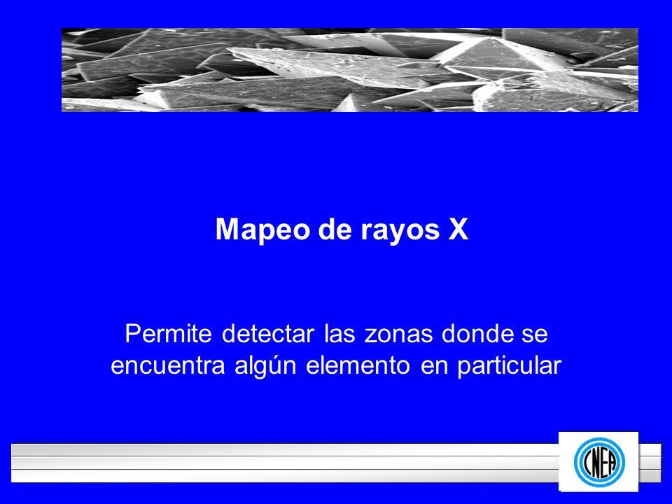 LOGOTIPO DE SU EMPRESA Mapeo de rayos X Permite detectar las zonas donde se encuentra algún elemento en particular