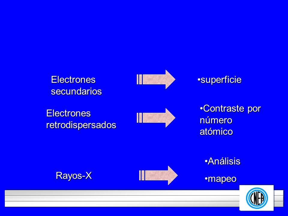 LOGOTIPO DE SU EMPRESA Electrones secundarios superficiesuperficie Electrones retrodispersados Rayos-X Contraste por número atómicoContraste por númer