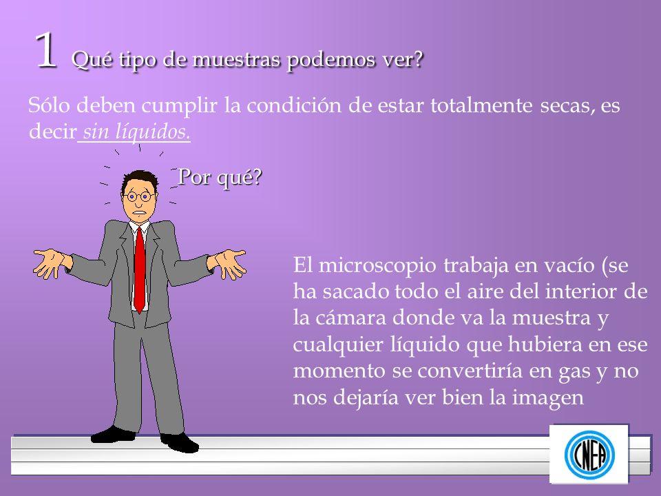 LOGOTIPO DE SU EMPRESA 1 Qué tipo de muestras podemos ver? Sólo deben cumplir la condición de estar totalmente secas, es decir sin líquidos. Por qué?