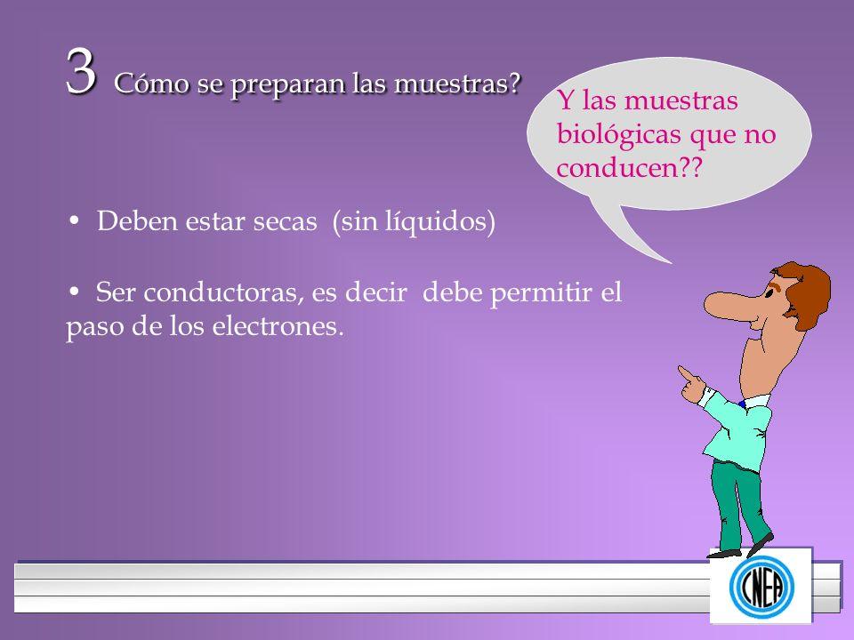 LOGOTIPO DE SU EMPRESA 3 Cómo se preparan las muestras? Deben estar secas (sin líquidos) Ser conductoras, es decir debe permitir el paso de los electr