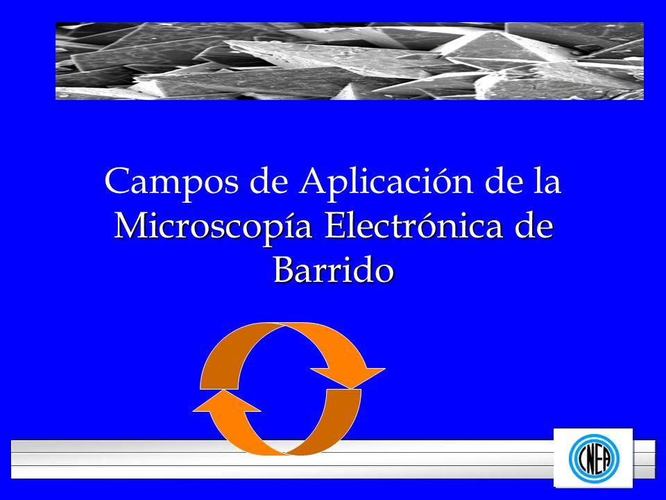 LOGOTIPO DE SU EMPRESA Microscopía Electrónica de Barrido Campos de Aplicación de la Microscopía Electrónica de Barrido