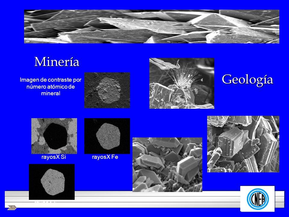 LOGOTIPO DE SU EMPRESA Minería Geología rayosX SirayosX Fe rayosX S Imagen de contraste por número atómico de mineral