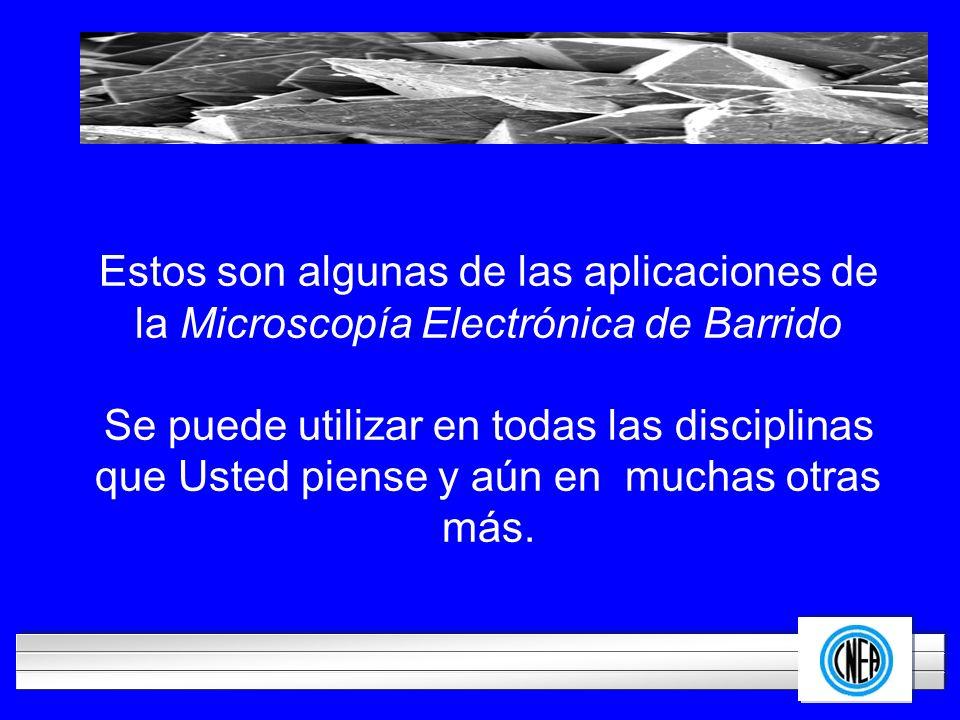 LOGOTIPO DE SU EMPRESA Estos son algunas de las aplicaciones de la Microscopía Electrónica de Barrido Se puede utilizar en todas las disciplinas que U