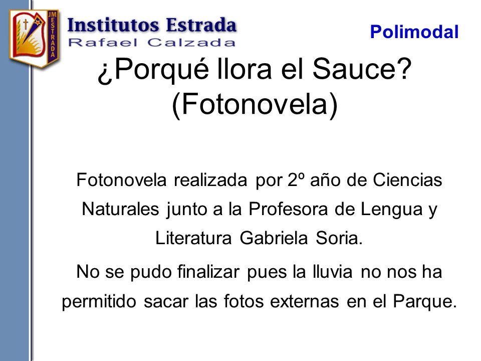 ¿Porqué llora el Sauce? (Fotonovela) Fotonovela realizada por 2º año de Ciencias Naturales junto a la Profesora de Lengua y Literatura Gabriela Soria.