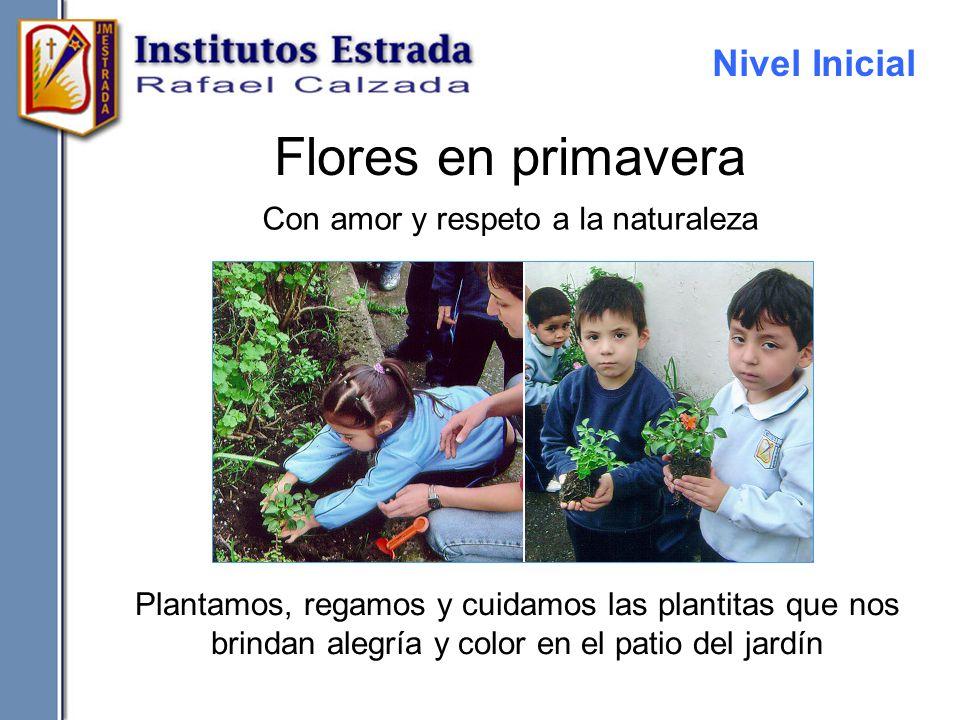 Flores en primavera Con amor y respeto a la naturaleza Plantamos, regamos y cuidamos las plantitas que nos brindan alegría y color en el patio del jar