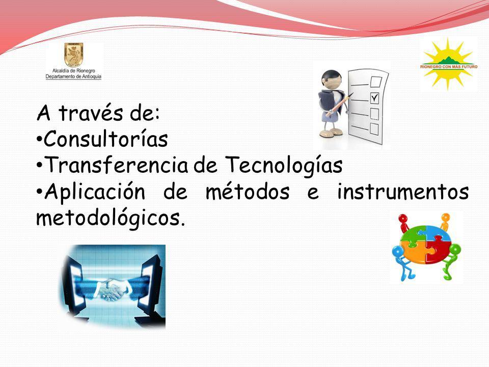 A través de: Consultorías Transferencia de Tecnologías Aplicación de métodos e instrumentos metodológicos.