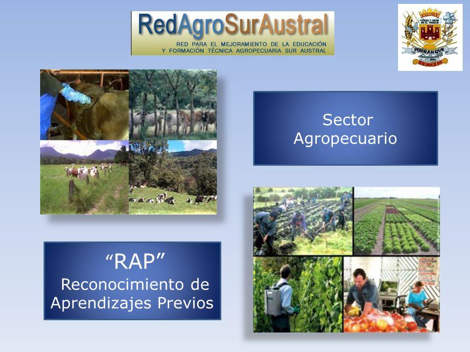 RAP Reconocimiento de Aprendizajes Previos Sector Agropecuario