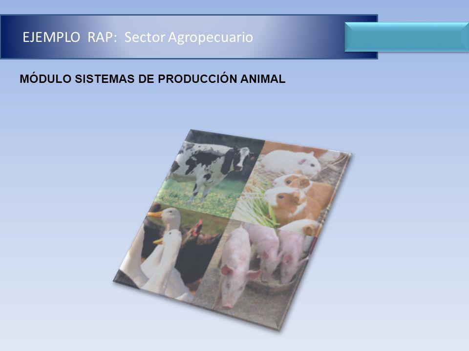 EJEMPLO DE RAP MÓDULO SISTEMAS DE PRODUCCIÓN ANIMAL EJEMPLO RAP: Sector Agropecuario