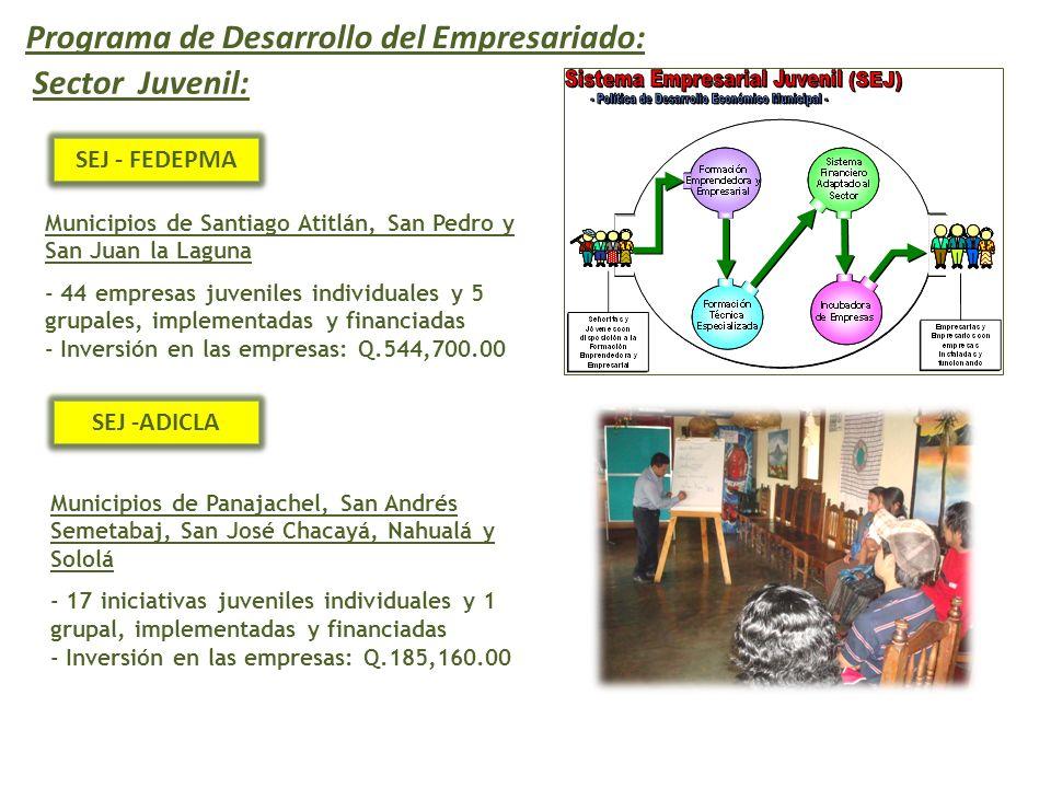 SEJ - FEDEPMA Municipios de Santiago Atitlán, San Pedro y San Juan la Laguna - 44 empresas juveniles individuales y 5 grupales, implementadas y financiadas - Inversión en las empresas: Q.544,700.00 Programa de Desarrollo del Empresariado: Sector Juvenil: Municipios de Panajachel, San Andrés Semetabaj, San José Chacayá, Nahualá y Sololá - 17 iniciativas juveniles individuales y 1 grupal, implementadas y financiadas - Inversión en las empresas: Q.185,160.00 SEJ -ADICLA